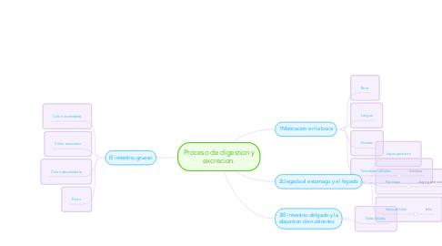 Proceso de digestion y excrecion. (Ejemplo) - MindMeister