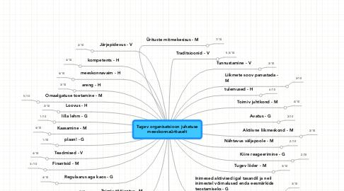 Mind Map: Tugev organisatsioon juhatuse meeskonnaürituselt