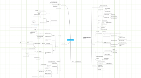 Mind Map: La question turque