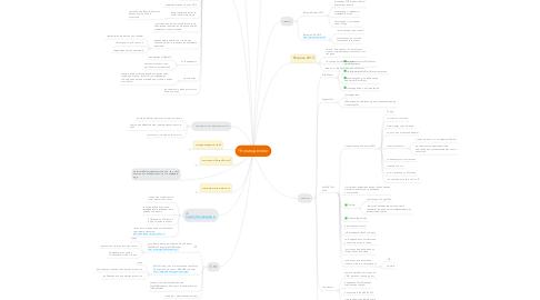 Mind Map: Что мы делали