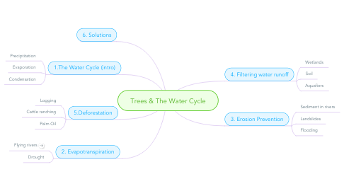 Mind Map: Trees & The Water Cycle