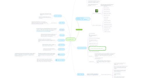 Mind Map: Principios IxD