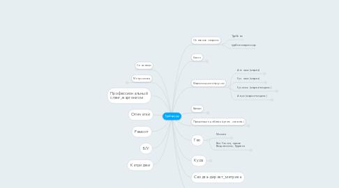 Mind Map: Турбору.ру