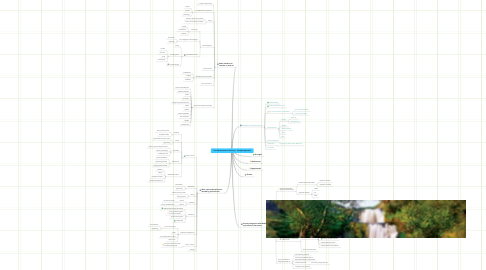 Mind Map: The Advancement of Security -  Catalyst Approach