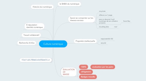 Mind Map: Culture numérique