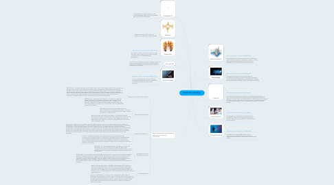 Mind Map: Gestión de la tecnología