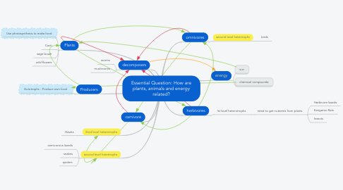 Mind Map: Essential Question: How are plants, animals and energy related?