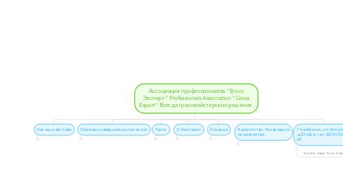 """Mind Map: Ассоциация профессионалов """"Гросс Эксперт"""" Professionals Association """"Gross Expert"""" Всегда гроссмейстерские решения."""