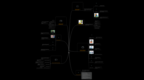 Mind Map: AVA Y SGI