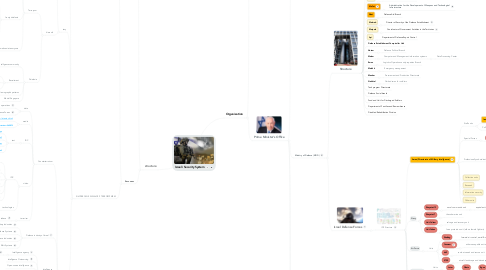 Mind Map: Israeli Security System