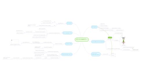 Mind Map: CICLO OVARICO