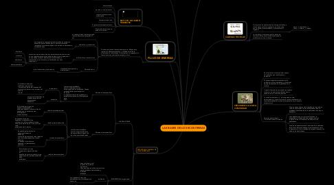 Mind Map: LAS BASES DE LOS ECOSITEMAS