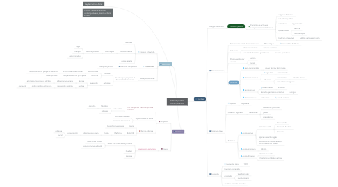 Mind Map: Sistemas jurídicos contemporáneos