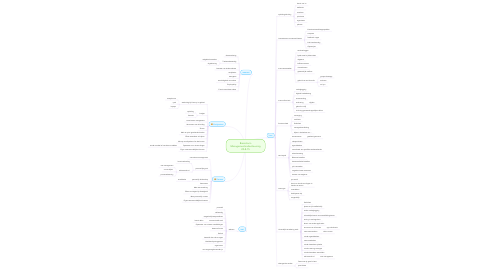 Mind Map: Brainstorm Managementondersteuning 20-8-15