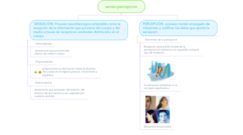 Mind Map: senso-percepcion