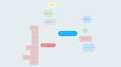 Mind Map: AGRESIONES AMBIENTALES - INFECCIONES DE LA MADRE