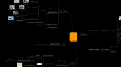 Mind Map: LOS ACTIVOS FIJOS