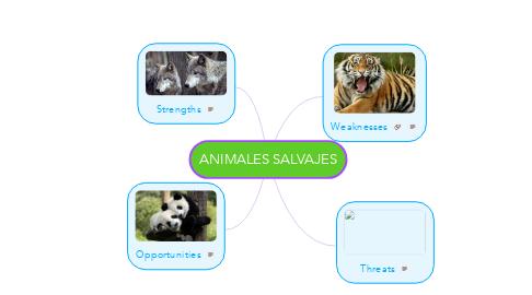 Mind Map: ANIMALES SALVAJES