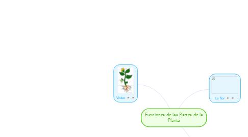 Mind Map: Funciones de las Partes de la Planta