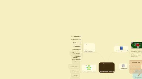 Mind Map: ORGANIZADOR VISUAL