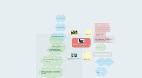 Mind Map: PROBLEMAS DE SEGURIDAD EN INTERNET