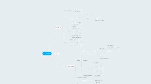 Mind Map: test monkey