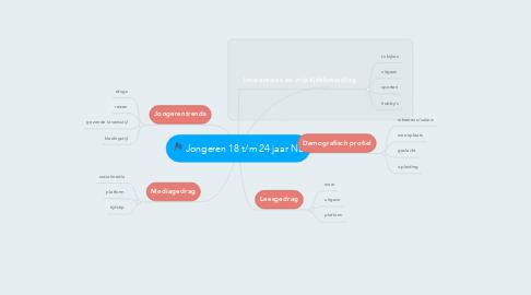Mind Map: Jongeren 18 t/m 24 jaar NL