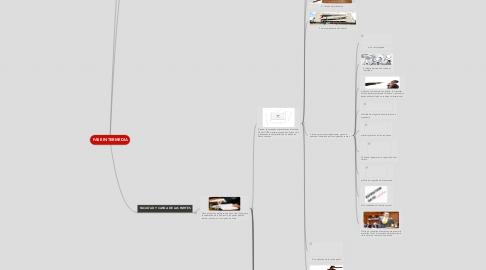 Mind Map: FASE INTERMEDIA