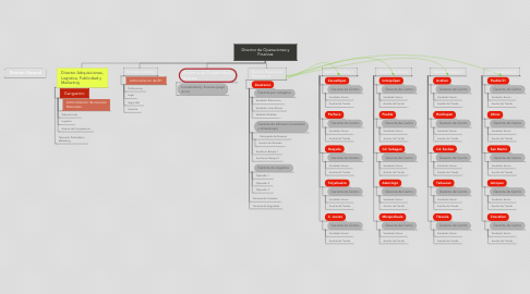 Mind Map: Director de Operaciones y Finanzas