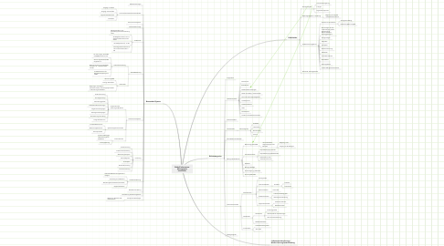 Mind Map: Risiko/Performance- Management Immobilien