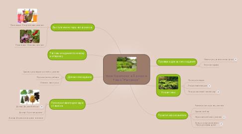 """Mind Map: Урок биологии в 5 классе. Тема """"Растения"""""""