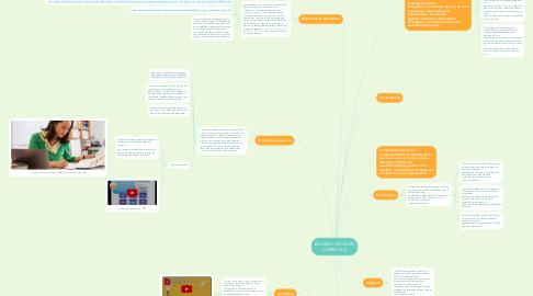 Mind Map: ELEMENTOS DE UN CURRICULO