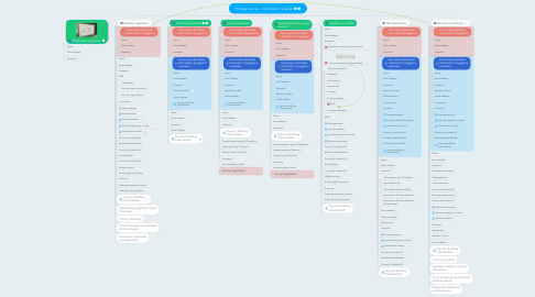 Mind Map: Process journey - Information required
