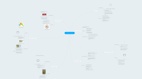 Mind Map: 7 themes of civilization