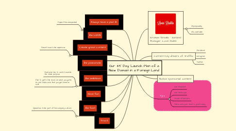 Mind Map: Our 45 Day Launch Plan of a New Domain in a Foreign Land