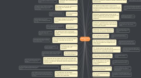Mind Map: Agenda 21 en el Perú