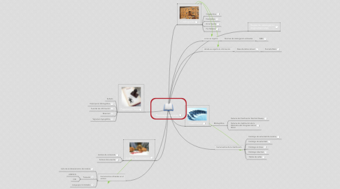 Mind Map: Procesos técnicos