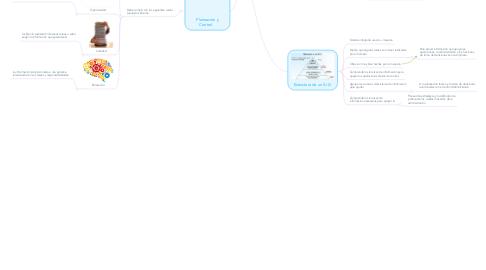 Mind Map: Sistemas de Información Gerencial.