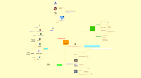 Mind Map: LUDOMÀTICA