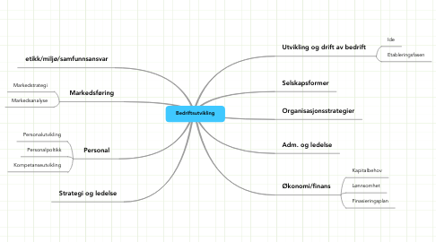 Mind Map: Bedriftsutvikling