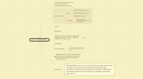 Mind Map: Copy of Giza ehunak