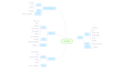 Mind Map: PATINES
