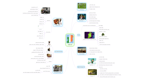 Mind Map: Ireland