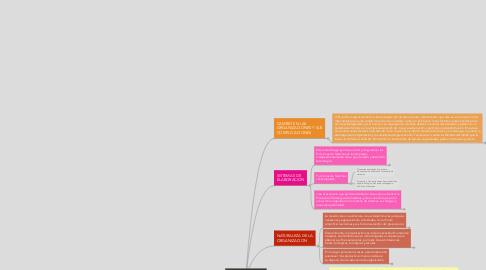 Mind Map: PROCESOS EN UNA ORGANIZACION