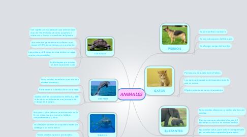 Mind Map: ANIMALES