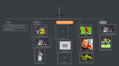 Mind Map: Marco Reus