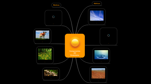 Mind Map: Componentes del Ecosistema
