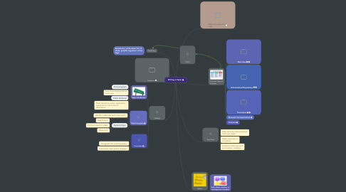 Mind Map: Writing a Paper
