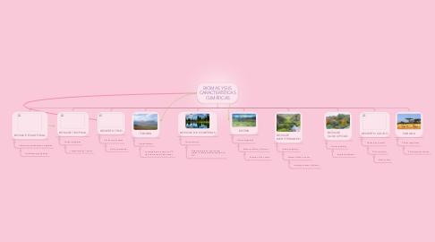 Mind Map: BIOMAS Y SUS CARACTERÍSTICAS CLIMÁTICAS