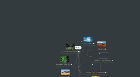 Mind Map: BIOMA